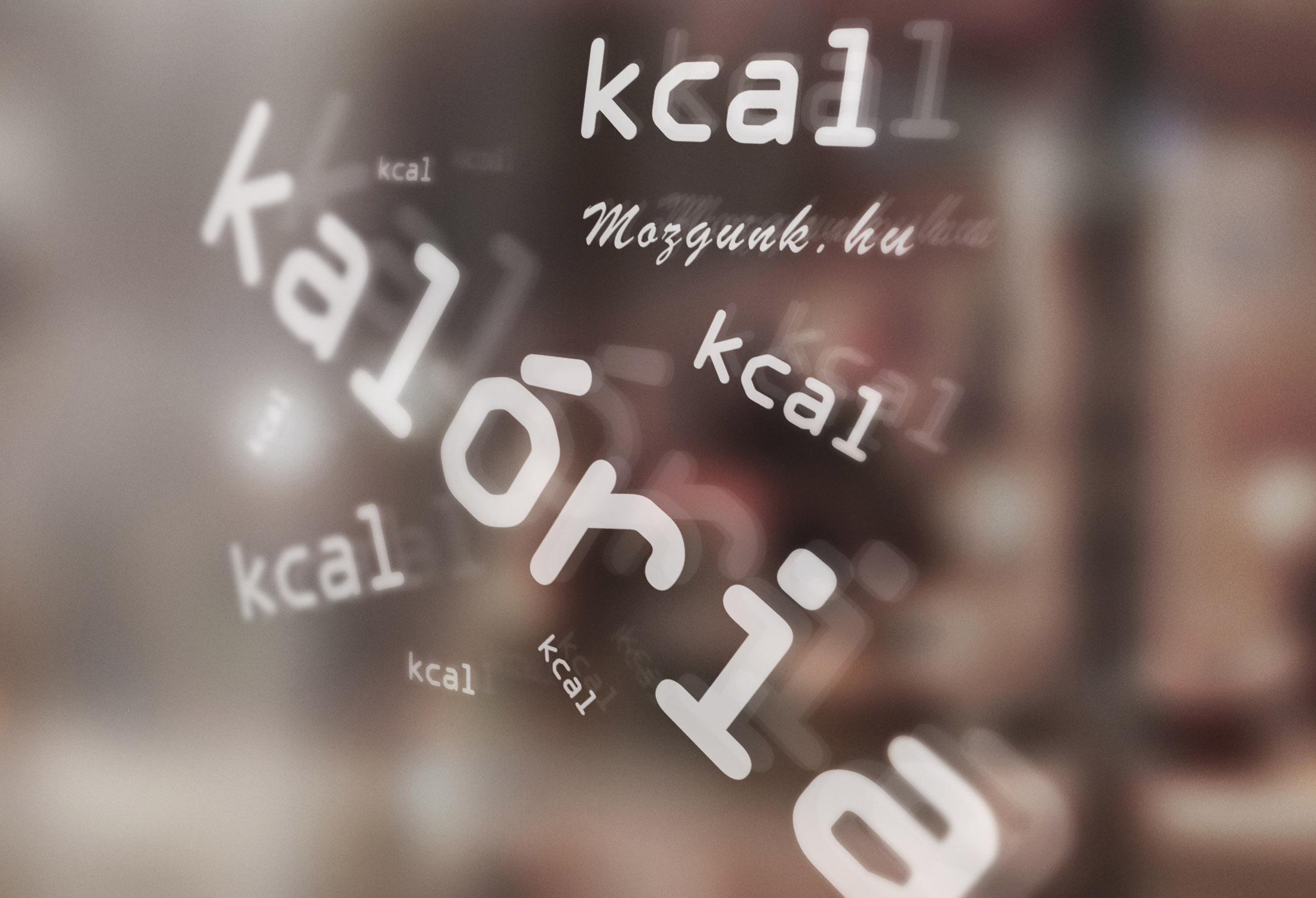 Kalória - kilokalória - kcal