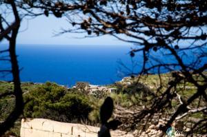 malta_victoria_lines3