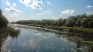 Kányavári sziget